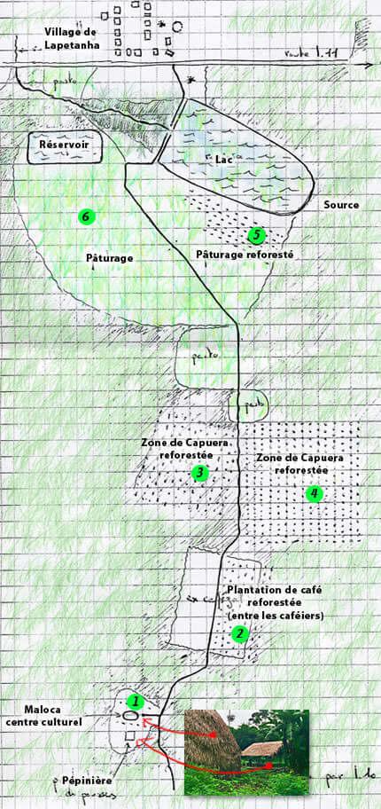 plantation-map-scan