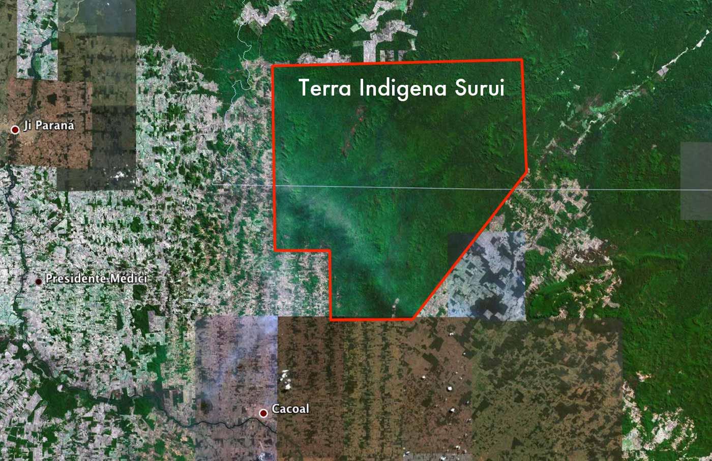 Amazonie deforestation reforestation